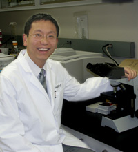 Ie-Ming Shih, M.D., Ph.D., Professor, Pathobiology Graduate Program, Department of Pathology, Johns Hopkins University, Baltimore, Maryland