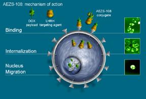 AEZS-108 Mechanism of Action