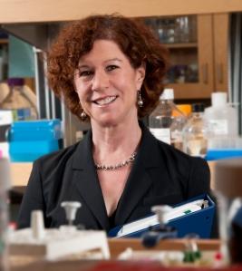 PARP Inhibitor Olaparib Has Activity in High-Grade Serous Ovarian Cancer Without Inherited BRCA1 or BRCA2 Gene Mutations